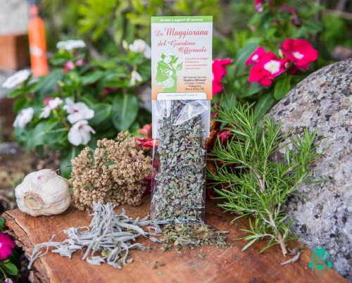 maggiorana-giardino-officinale-spezie-abruzzo-3.jpg