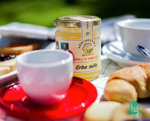 miele-allerba-sulla-apicoltura-bianco-miele-artigianale-abruzzo-1-341.jpg