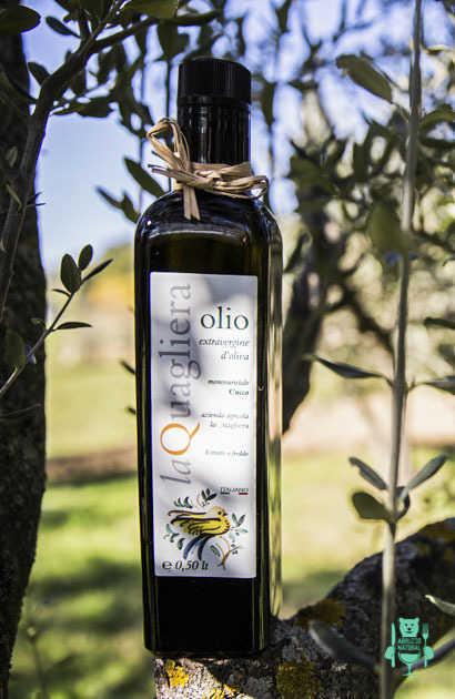 olio-extravergine-abruzzese-varieta-cucco--la-quagliera.JPG