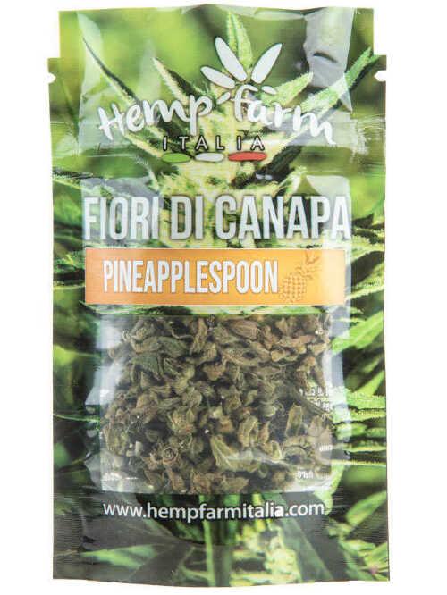 pinapplespoon-cbd-fiori-di-canapa-hemp-farm-italia-600x800.jpg