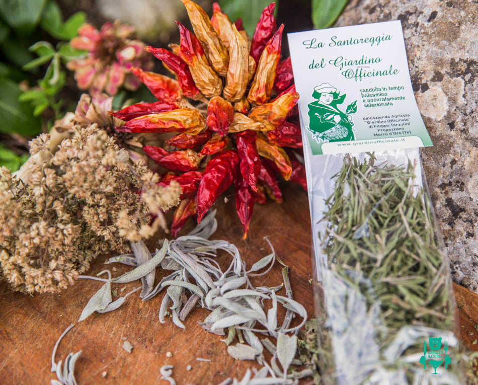 Santoreggia erbe aromatiche abruzzesi abruzzonatural prodotti