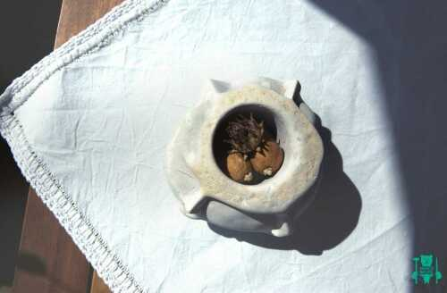 vaso-artigianale-con-faccine-3.jpg