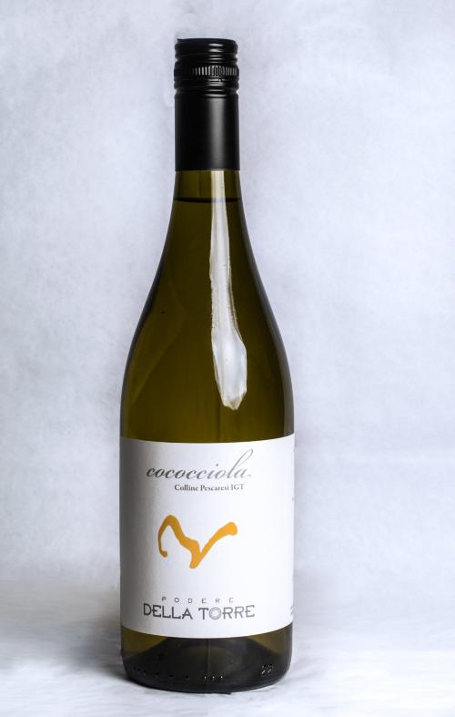 vino-cococciola-abruzzese.jpg