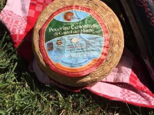 formaggio-pecorino-di-castel-del-monte.jpeg