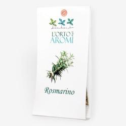 rosmarino-erbe-aromatiche.jpg